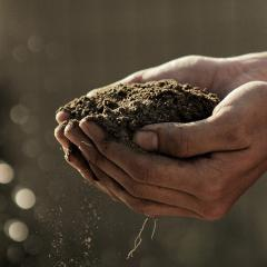 Queenslanders are being asked to 'dig deep' for Soils for Science.