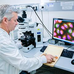 Researcher Darren Brown at microscope