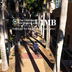IMB facilities video