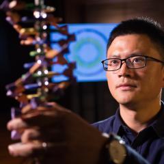 Professor Jian Yang