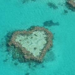 Aerial photo of Heart-shaped reef in the Great Barrier Reef