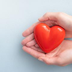Cupped hands holding heart shape